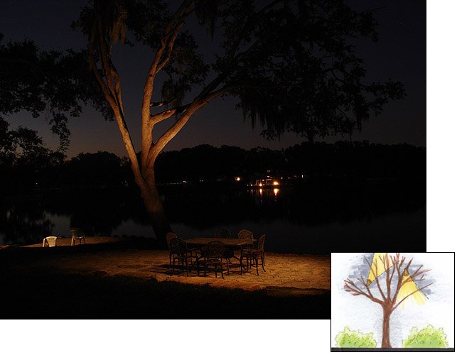 moon lighting for properties with mature trees or lakefront property